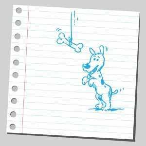musika blog dog doodle