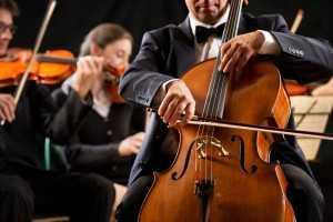 cellist in orchestra