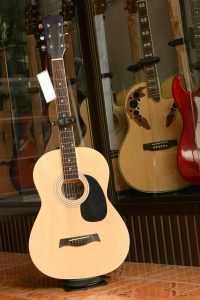 guitars in store
