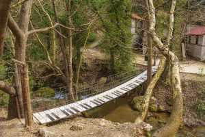 musical bridge piano