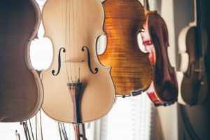violin luthier