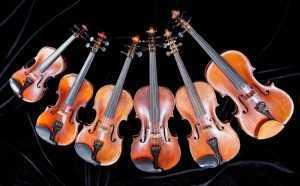 violins different sizes