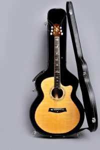 guitar case acoustic