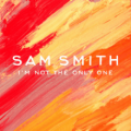 Sam Smith I'm Not the Only One