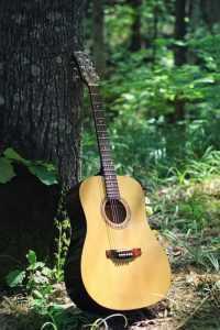summer guitar